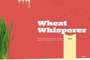 Wheat Whisperer