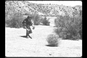 Tumbleweed trainer
