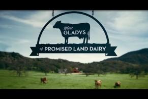Meet Gladys