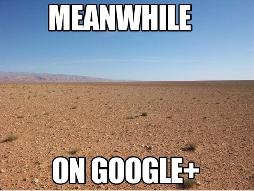 Tymczasem na Google+
